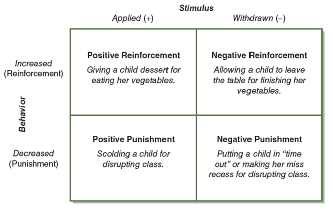 reinforcement and punishment 2